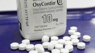 Seg1 ocycontin closeup