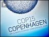 Cop15-wrapup