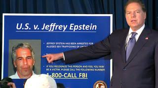 Seg1 epstein charges
