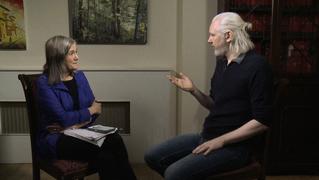 Julian assange wikileaks tpp 2