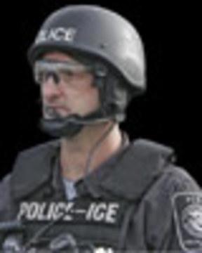 Police ice web