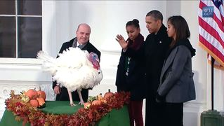 Obama-turkey-pardon