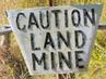 Landmine-web