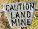 Landmine web