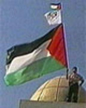 Pal flag 5 23 06