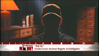 Pete animals rights