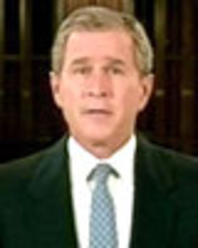 Bush 2000