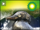 Bp greenwash