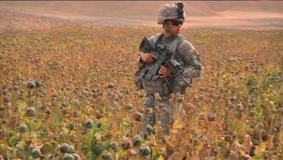 S1 afghanistan ustroops1