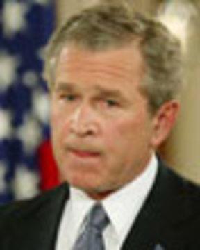 Bush2 041304