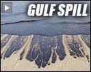 20100609 oilyshore