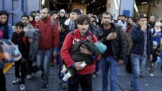 Refugeeseu