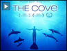 Filmmakers, Activists Try to Save Dolphins from Slaughter in Oscar-Winning Doc _The Cove_