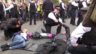 Seg1 xr arrests 1