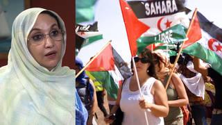 Seg2 westernsahara 2