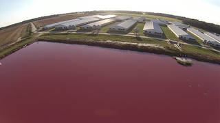 Seg hog farm drone