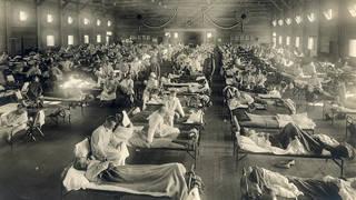 Seg3 1918 flu 1