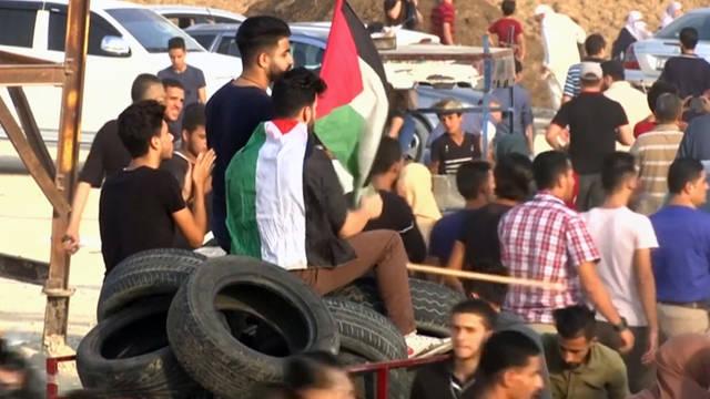 Seg palestinians