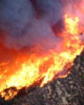 Californiafiresweb