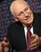 Cheney-web