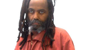 Exclusive: Mumia Abu-Jamal Releases New Prison Radio Commentary on Walter Scott Shooting