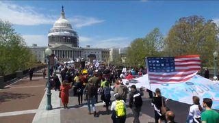 Democracyspring