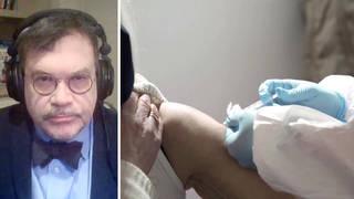 Seg1 hotez vaccine split 1