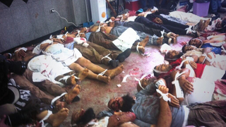 Egypt casualties