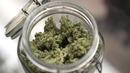 Reu-usa-marijuana_legaliz-1