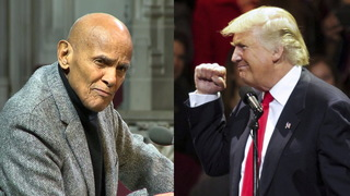 S04 belafonte trump split