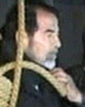 Saddamnoose