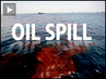 As Gulf of Mexico Oil Spill Spreads, BP, Halliburton and Transocean Executives Deflect Blame for Spill at Senate Hearings