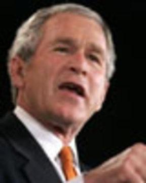 Bush10