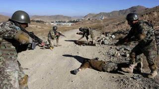 Seg afghan armycasualties