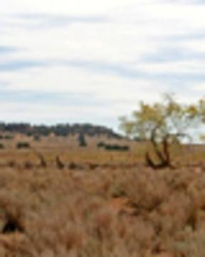 Utah1fslandweb
