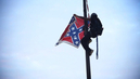 """This Flag Comes Down Today"": Bree Newsome Scales SC Capitol Flagpole, Takes Down Confederate Flag"