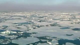 Seg1 climate 3