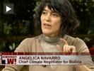 Navarro democracynow