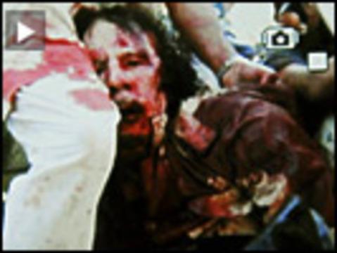Colonel gaddafi dead web