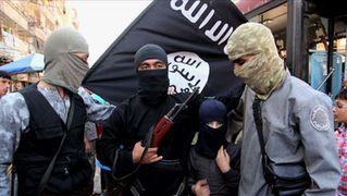 Isisforces
