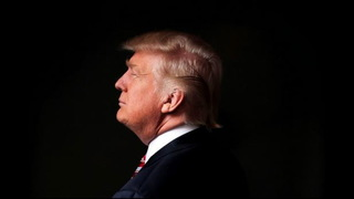 Trump perlstein